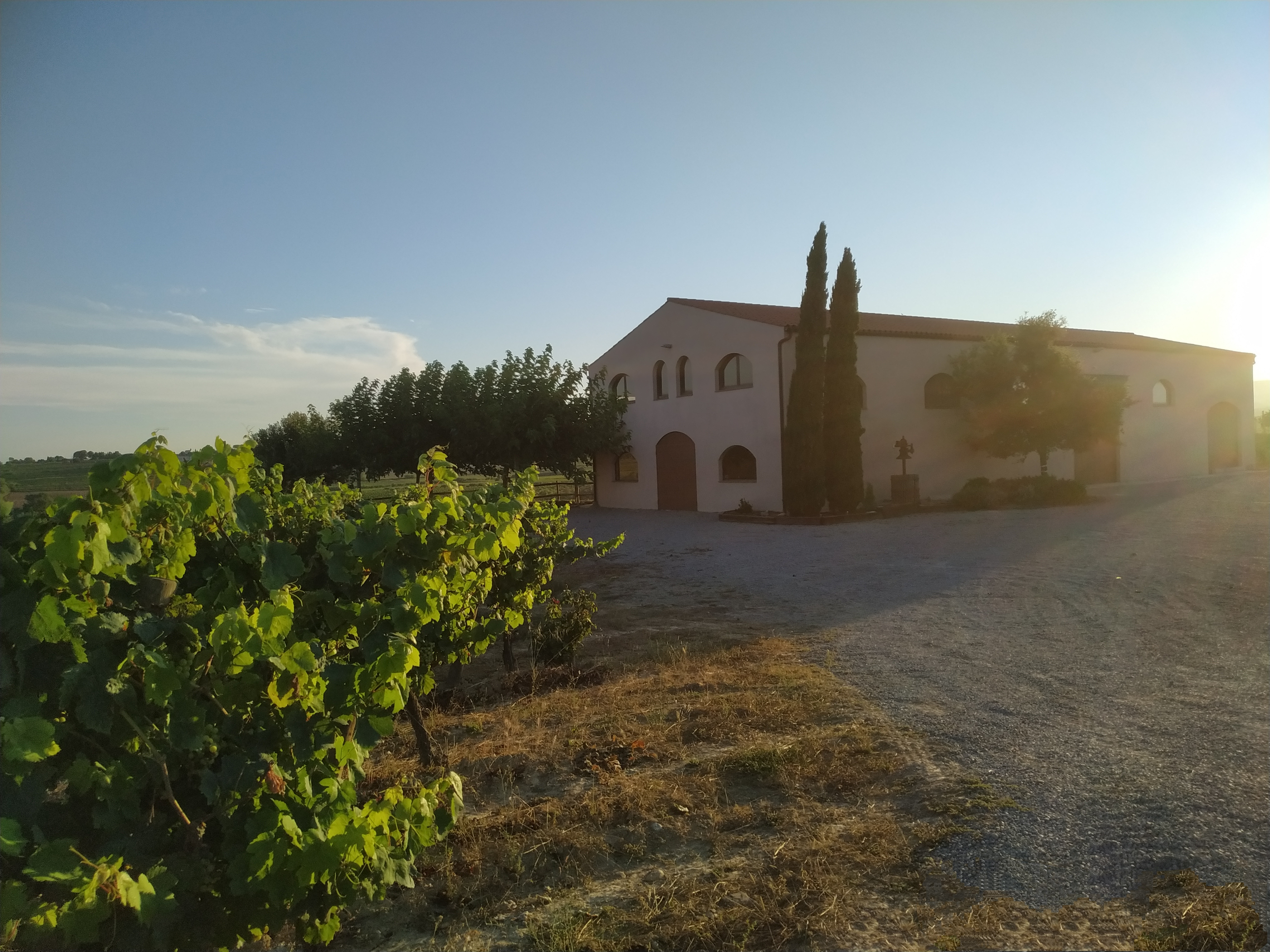 Celler Ros Marina